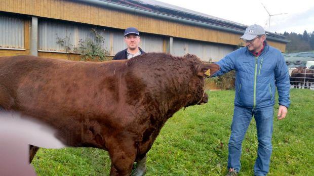El granjero Otto Greim (izquierda) cría ganado Angus orgánico.  El carnicero principal Edwin Schimmel a menudo se informa personalmente a su proveedor.
